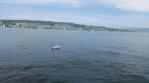 swan lake zurich