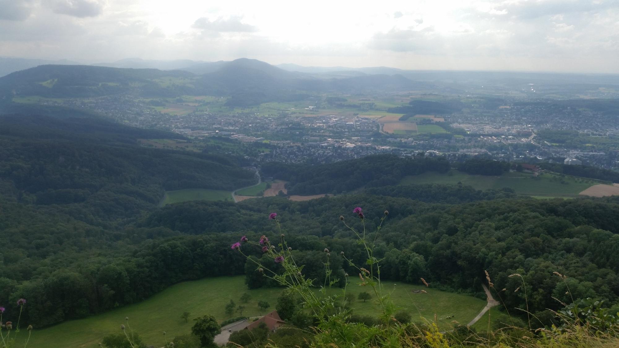viewpoint gempen turm hochwald