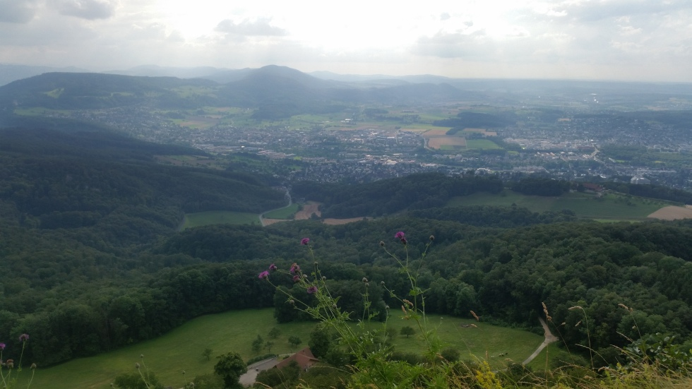 viewpoint gempen turm hochwald