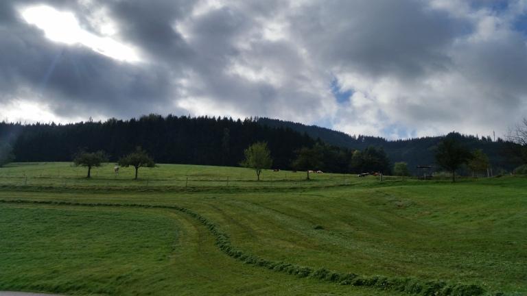 landscape schwarzwald elztal